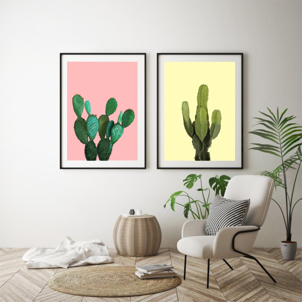 kaktus_zdjecie_1